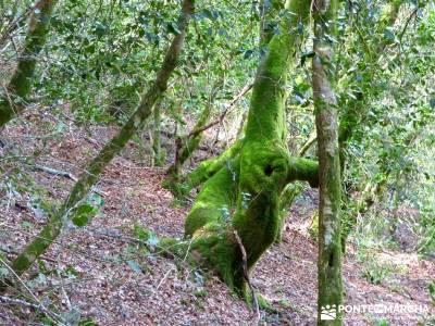 Sierra del Caurel (Serra do Courel) senderistas madrid excursiones de senderismo hacer senderismo en